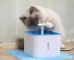 Pítko pro kočky